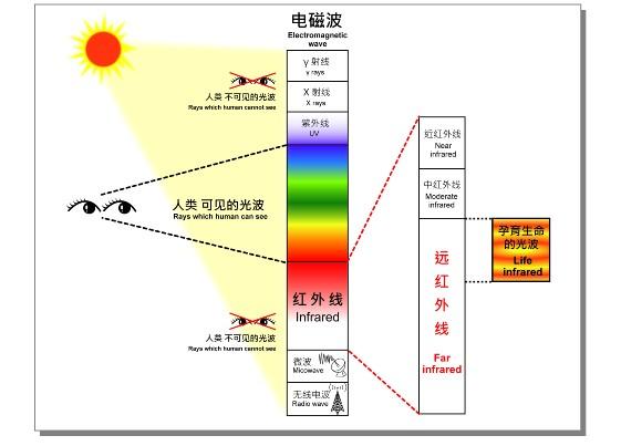 红外线可视原理是什么_白带是什么图片